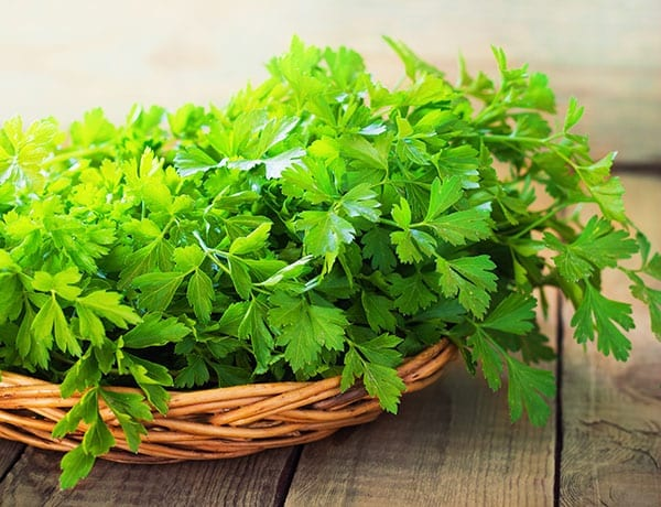 Herbs for a Healthy Life