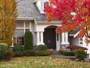 Fall Home Garden