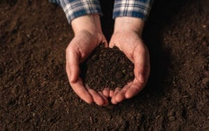Soil and Hands Image
