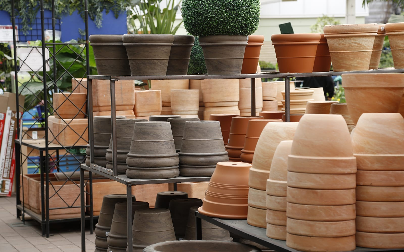 Pottery Section in the Store