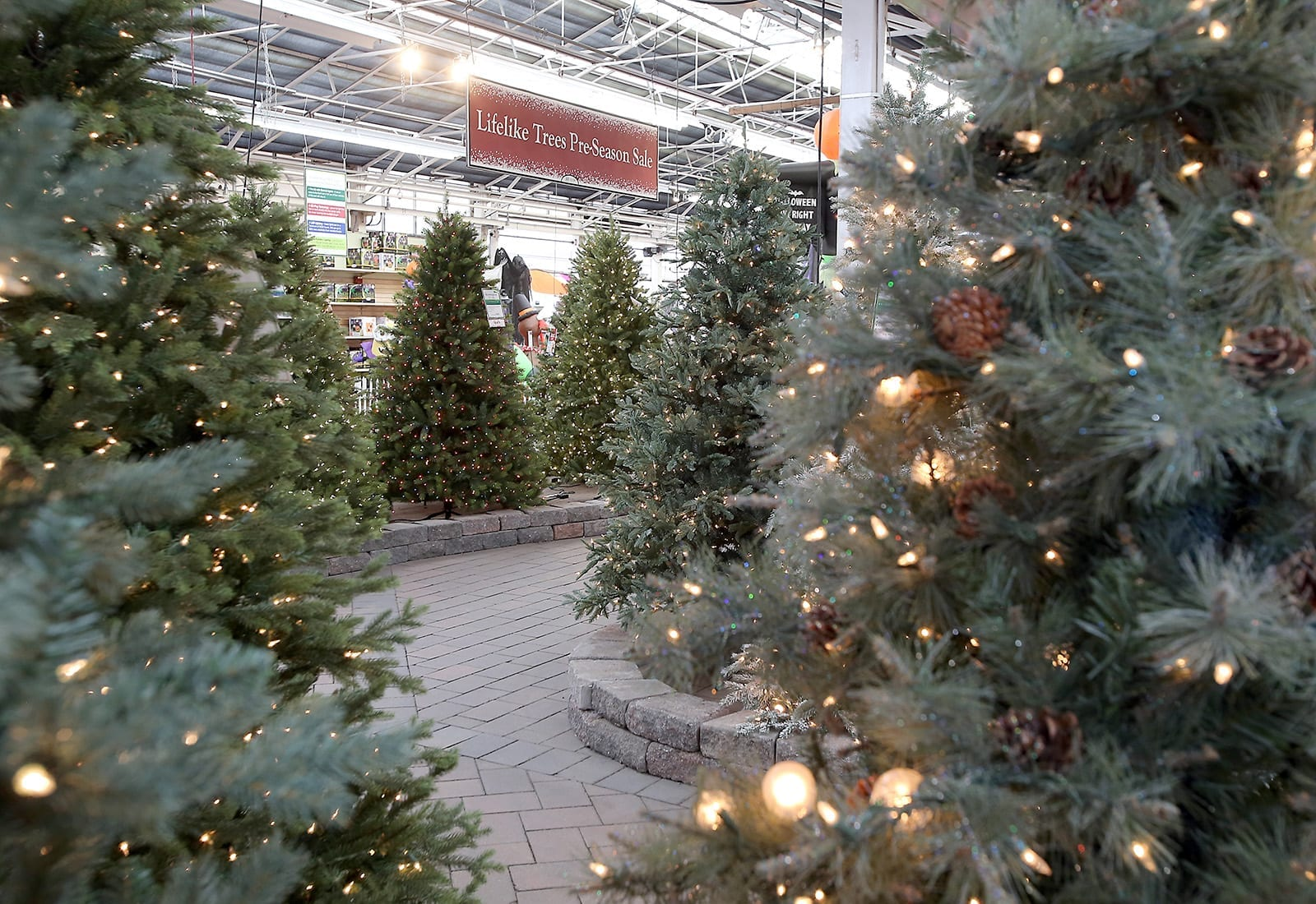 Lifelike Artificial Christmas Trees at Hicks Nurseries