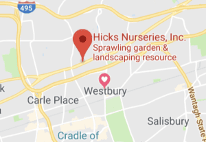 Hicks Nurseries Location - Google Map Link and Directions
