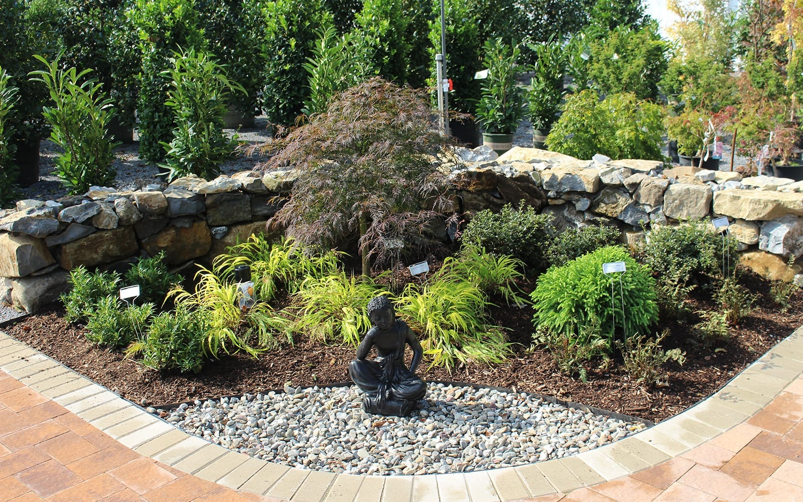 Zen Garden Display