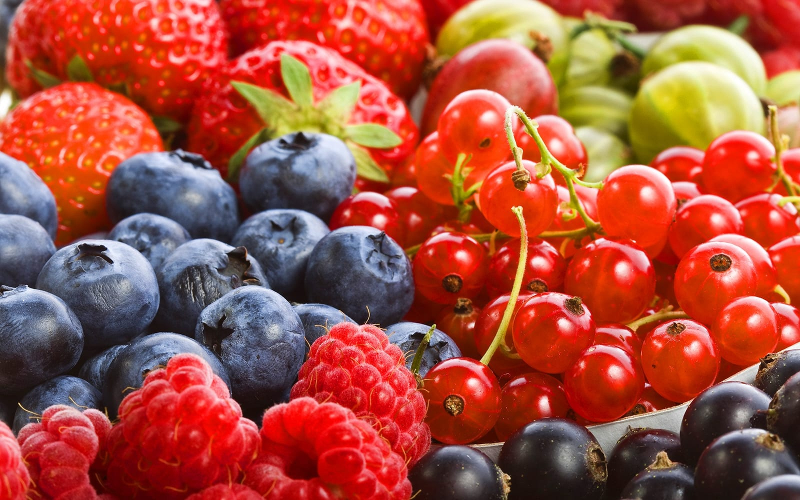 Assortment of Fruits and Berries