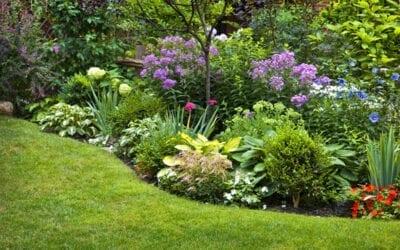 Mid Summer Garden Essentials