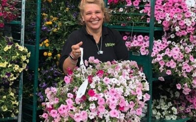 3 Fun Ways to Use a Hanging Basket in Your Garden