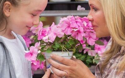 Great Gifts Mom will Love for Mother's Day