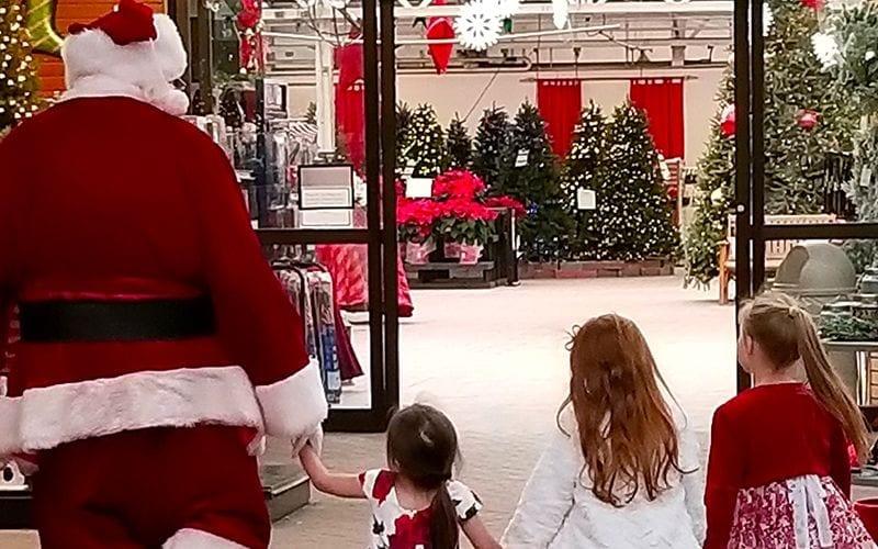 Family Traditions Begin at Hicks Nurseries