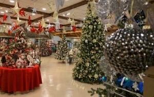 Christmas Open House @ Hicks Nurseries