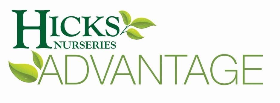 Hicks Advantage Logo