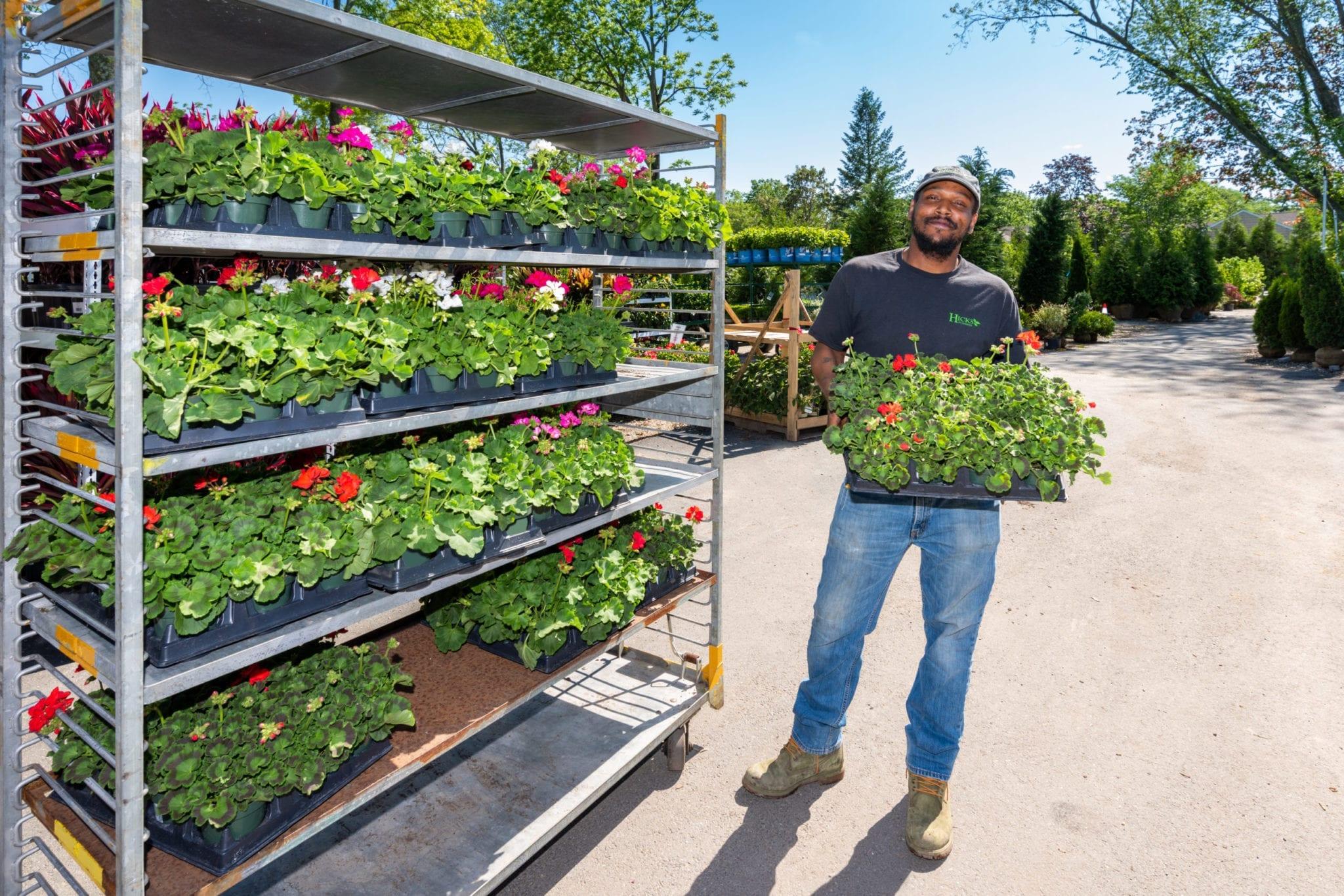 Webbs Garden Centre Jobs