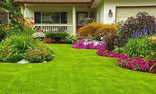 Flower Garden and Green Lawn in front of a house