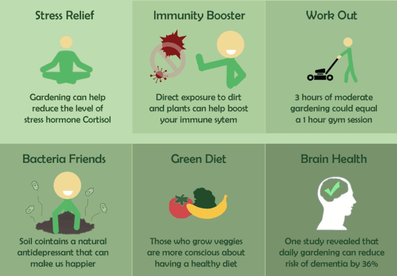 Garden Benefits Chart