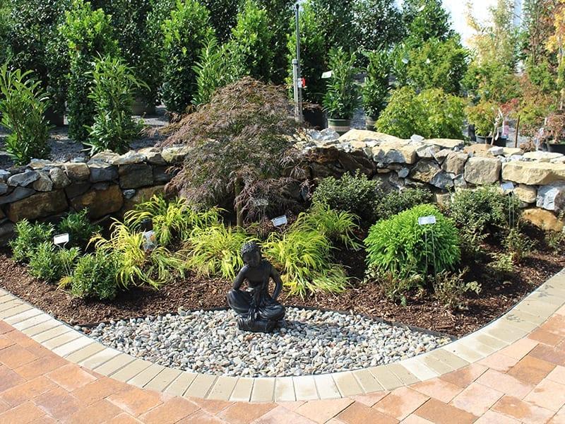 Zen Garden Display