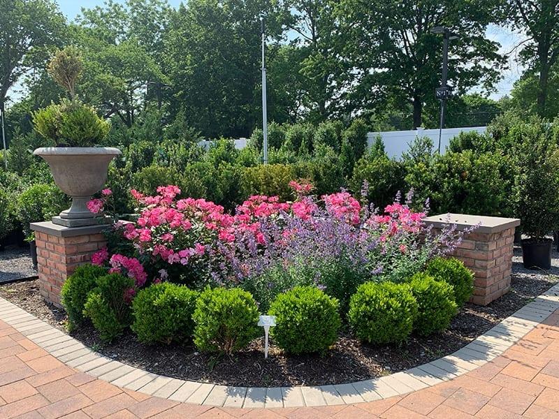 Formal Garden Display