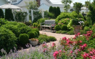 Summer Garden Evaluation Tips