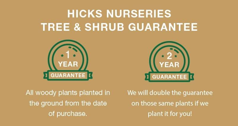 tree& shrub guarantee