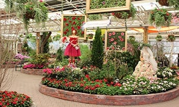 Flower Show Overview